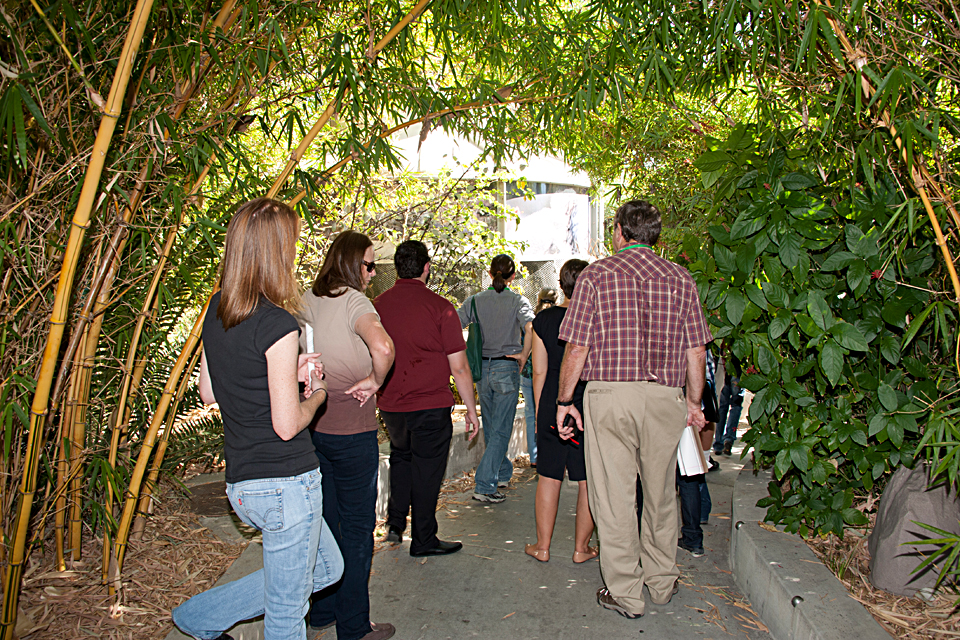 Visitors from the Association for the Advancement of Sustainability in Higher Education conference touring the Rainforest